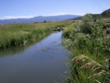 Acequia, Costilla County, Colorado