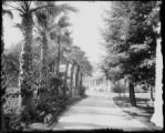 Los Angeles, Cal. residence, Adams St.