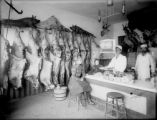 Taxidermy shop interior