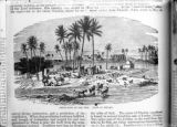 Art Bible illustrations Nile