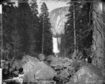The Vernal Fall