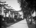 Colorado St. and Maryland, pergola, Pasadena