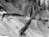 Mule train, Nellie mine