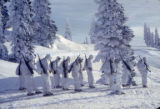 "Group of skitroopers in ""whites"", near Paradise, Washington"