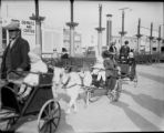 """Mitzi"" Rhoads in donkey cart on a family trip to Calif."