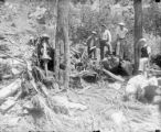 Men looking at car wreckage in trees