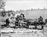 Covered wagon - drawn by mules