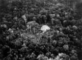 Air view ancient Maya pyramid, (2000 yrs old)