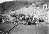 Cripple Creek miners' strike