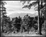 Vista of Pike's Peak from dining room veranda, Skelton's Mtn. Ranch, Colo. Midland Ry.