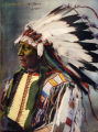 Chief Hollow Horn Bear Sioux