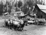 Six team wagons loaded with concentrate at Camp Bird mill ready to leave for Ouray