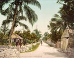 Meadow Street in Bain's Town, Nassau, Bahama Islands