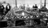 This fruit 36,000 lbs given away at Canon City, Colo. on fruit day Sept 20, 1894