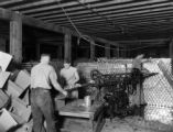Sealing cans at Delta Canning Factory