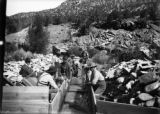 Cleaning up ripple [sic] box, Cottonwood Placer Co.