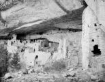 Cliff Palace, northwest