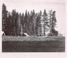 Camp on Yellowstone Lake