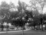 A Shady area in downtown section, Capitol grounds
