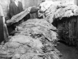 Animal pelts and traps