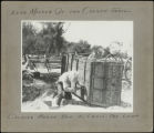 Ezra Meeker on the Oregon trail, calking [sic] wagon bed to cross the Loup