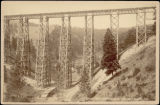 Marent's Trestle, 226 ft. high, near Missoula M.T.