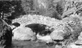 Bridge across No. Fork [sic] of Thompson River