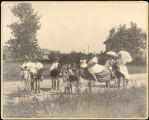 Girls and women on donkeys