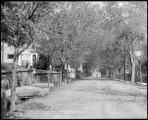 A shady lane in Manitou