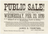 Public sale : by direction of the Commissioner of Indian Affairs, I will on Wednesday, Feb. 23,...