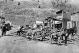 Burros loaded with track iron for mines at Silverton