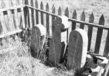 Homemade headstones, graves of Salaz family