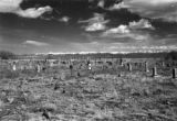 Catholic cemetery, La Garita, Colorado