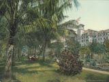 The Royal Ponciana [i.e. Poinciana], Lake Worth