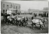 Colorado Packing and Provision Company draft horses