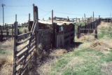 Fence line with shed on the John Gully property