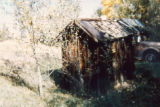 Coal Creek Agricultural Site (Grasso Park) outhouse