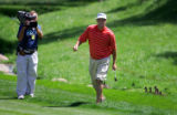 Baby ducks pass behind Bubba Watson after he crossed over a small stream on the 17th fairway after...