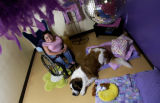 (WESTMINSTER, Colo., June 29, 2004)   Lisa Ferrerio and her dog Pythagoras pose in the Disco...