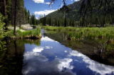 (MINTURN ,Colo., June 14, 2004-   The drainage  from the Holy Cross Wilderness Area forms the...