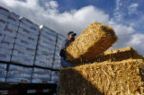 Troy Graves loads some bedding hay onto a trailer at the National Western Stock Show complex...