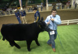 Stetson Copus (CQ), 15, of Burkburnett, Texas pulls his champion steer Husker, during the National...