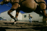 Patrick Phelps (cq) of Sedalia exercises his horse, Quincy, at the 100th annual National Western...