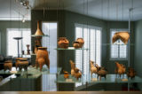 An extensive antique chinese pottery collection is displayed on glass shelving that is supended...
