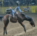 Shunn Blanks is thrown back during the Bareback Ridding event  at MLK African American heritage...