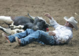 Jesse Guillory picks himself up of the ground after wrestling a steer to the ground during the MLK...