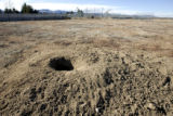 Second base on field 4 at Tom Watson Park is a prairie dog mound.  Prairie dogs that have made...