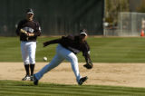 Rockies second baseman Luis Gonzalez goes after a ground ball during practice Saturday February...