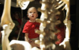 One and a half year old Steven Lukasiewicz from Littleton is totally amazed by a skeleton on...