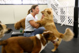 At Canine Fitness and Fun Center in Denver, Rhonda Siegal pets a clients dog during play time. The...